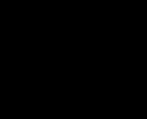 Strichzeichnung einer auf dem Rücken liegenden Katze