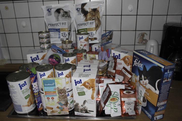 zahlreiche Packungen Katzenfutter verschiedener Sorten