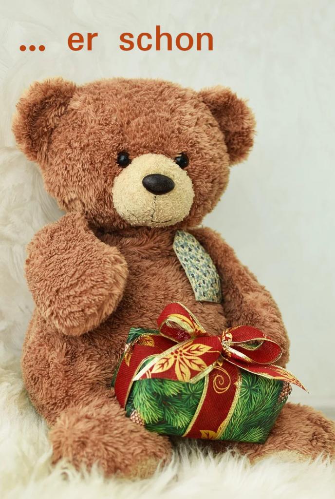 Stoffbär mit geschenk
