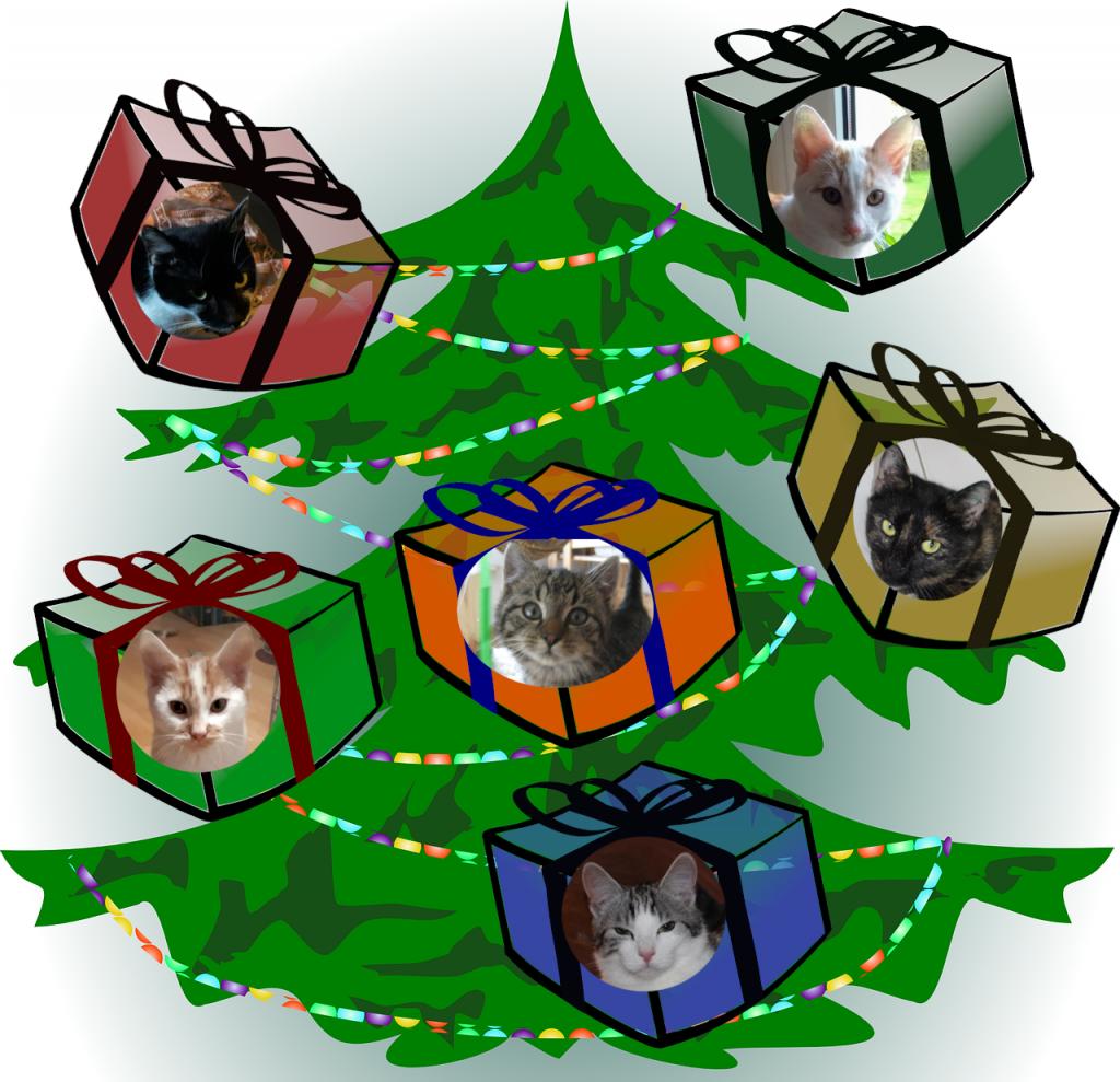 Grafik: Weihnachtsbaum mit Paketen, darauf Bilder von Katzen